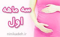 سه ماهه اول بارداری