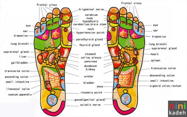 ماساژ رفلکسولوژی کف پا